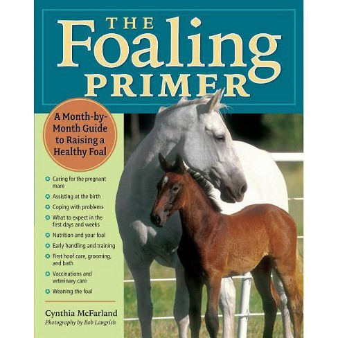 The Foaling Primer - by  Cynthia McFarland (Paperback) - image 1 of 1