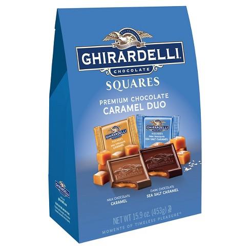 Premium Chocolate Squares - 15.9oz