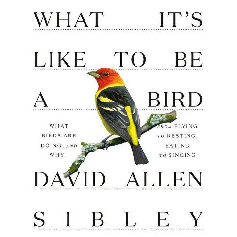 What It's Like to Be a Bird - (Sibley Guides) by  David Allen Sibley (Hardcover) - image 1 of 1