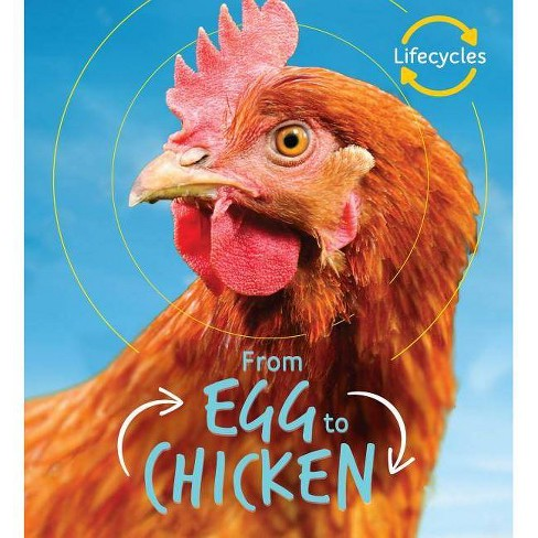 From Egg to Chicken - (Life Cycles) by  Camilla De La Bedoyere (Hardcover) - image 1 of 1