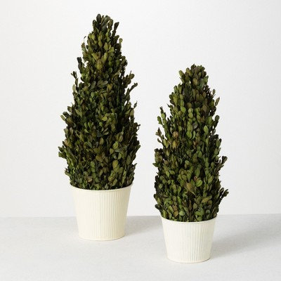 """Sullivans 1.8' &1.5' Boxwood Cone Artificial Tree Set of 2, 21.75""""H & 18""""H Green"""