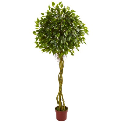 6ft Ficus Artificial Topiary Tree - Nearly Natural