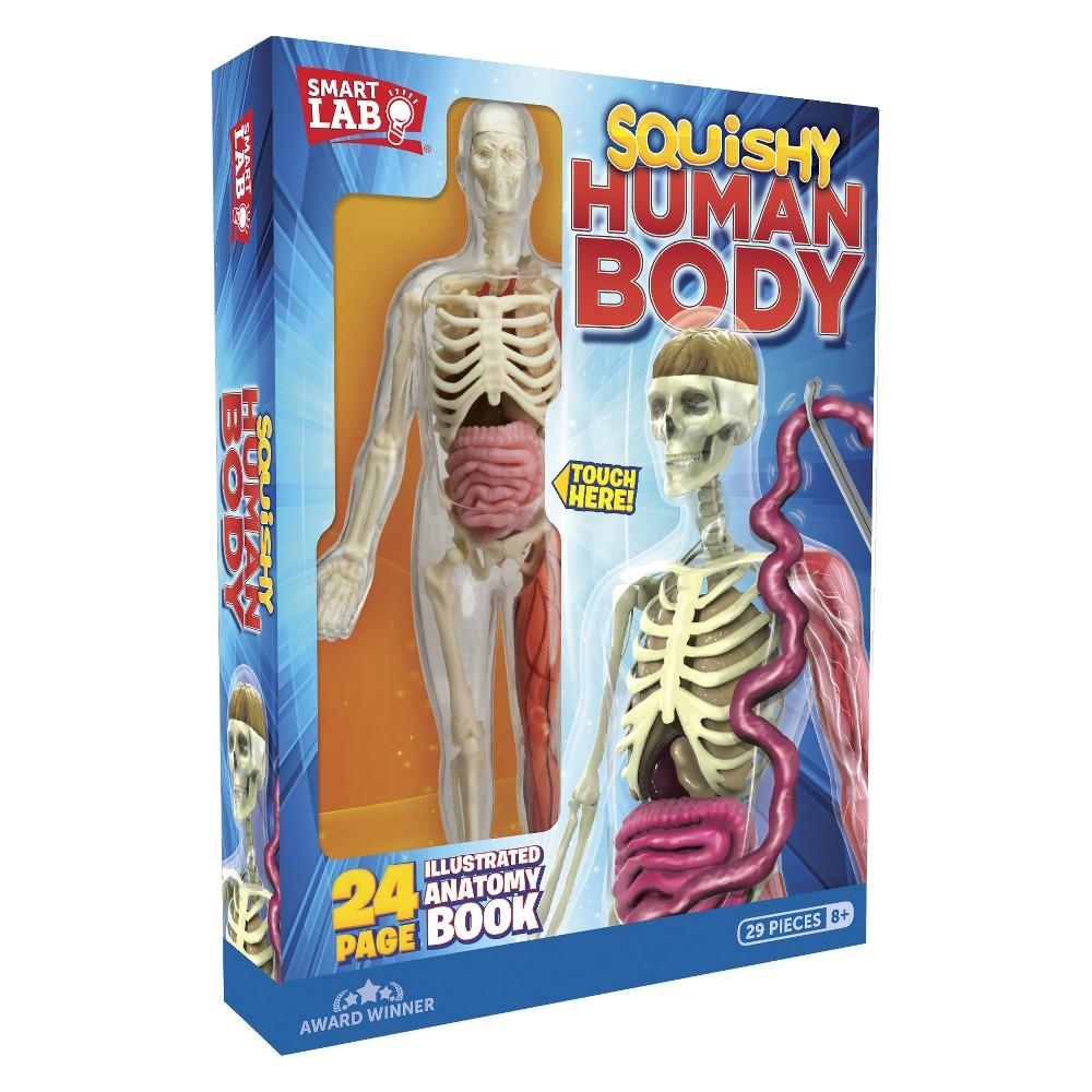 Squishy Human Body Anatomy Kit