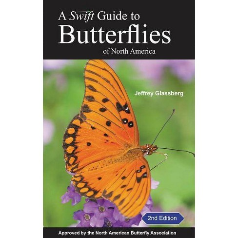 A Swift Guide to Butterflies of North America - 2 Edition by  Jeffrey Glassberg (Paperback) - image 1 of 1