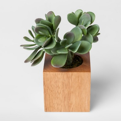 Faux Succulent Plant in Wood Pot - Small - Project 62™