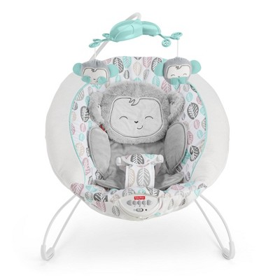 Fisher-Price Snugamonkey Deluxe Bouncer