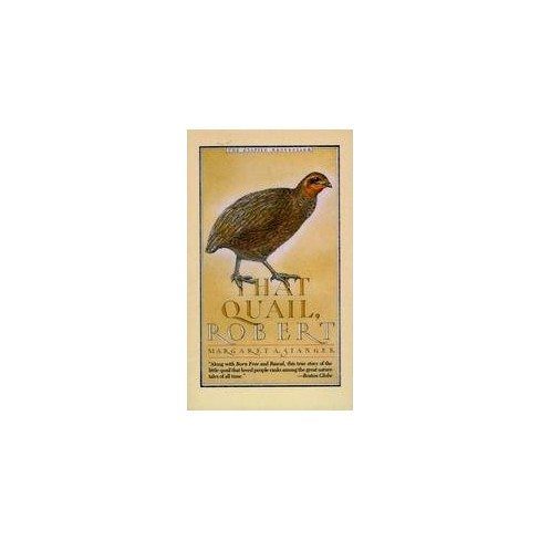 That Quail, Robert - by  Margaret Stanger (Paperback) - image 1 of 1