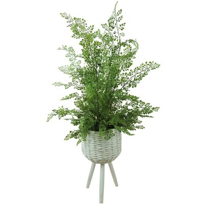 "46"" x 18"" Artificial Maiden Hair Fern Plant in Basket Stand - LCG Florals"