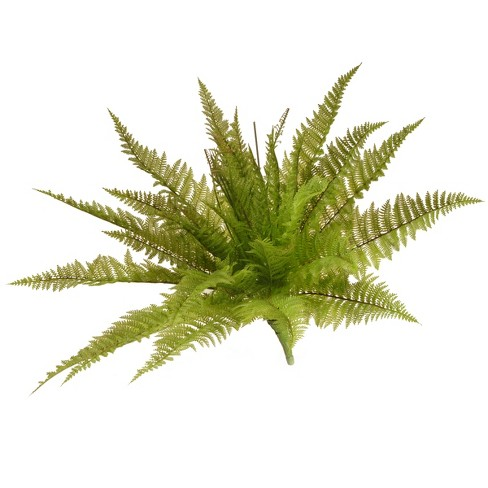 "Garden Accents Artificial Ruffle Fern Plant Green 21"" - National Tree Company® - image 1 of 1"