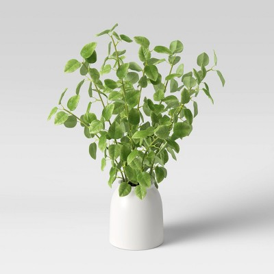 "26"" x 16"" Artificial Evergreen Leafy Stem Plant in Vase Tan - Threshold™"