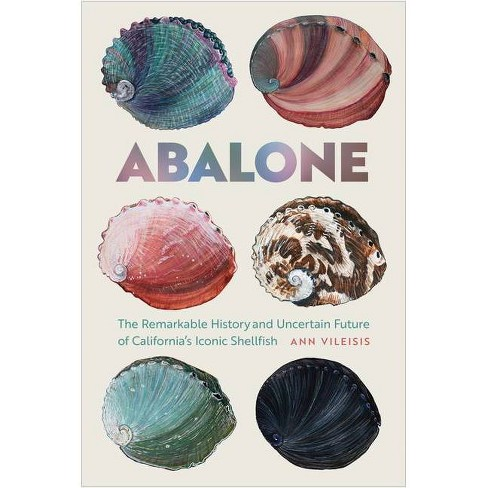 Abalone - by  Ann Vileisis (Paperback) - image 1 of 1