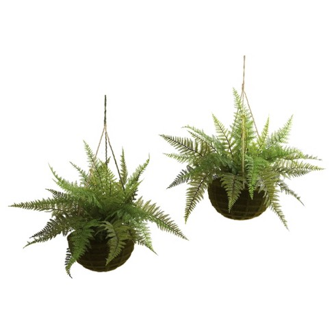 Artificial Leather Fern With Mossy Hanging Basket Indoor / Outdoor Set Of 2 - Nearly Natural - image 1 of 2