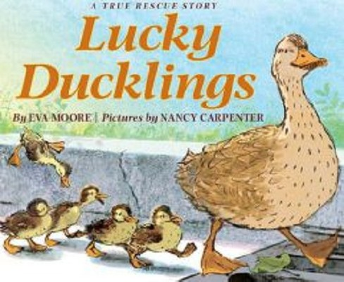 Lucky Ducklings (Hardcover) - image 1 of 1