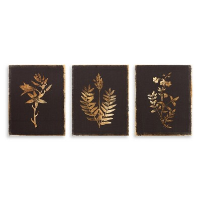 8 x10  3pc Golden Silk Screened Botanical Drawings Canvas Art Black - Patton Wall Decor