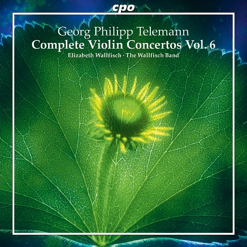 Wallfisch band - Telemann:Complete violin ctos vol 6 (CD) - image 1 of 1