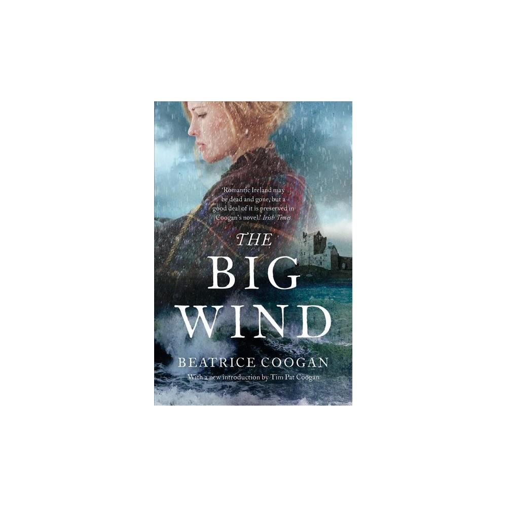 Big Wind - by Beatrice Coogan (Paperback)