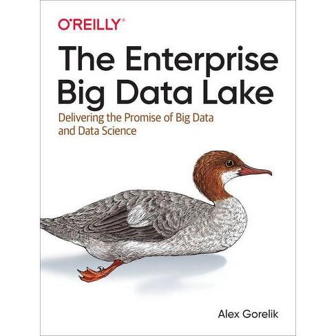 The Enterprise Big Data Lake - by  Alex Gorelik (Paperback) - image 1 of 1