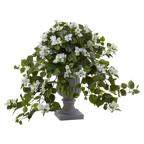 27 Bougainvillea Flowering Silk Plant With Target