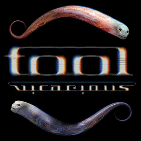 Tool: Vicarious - image 1 of 1