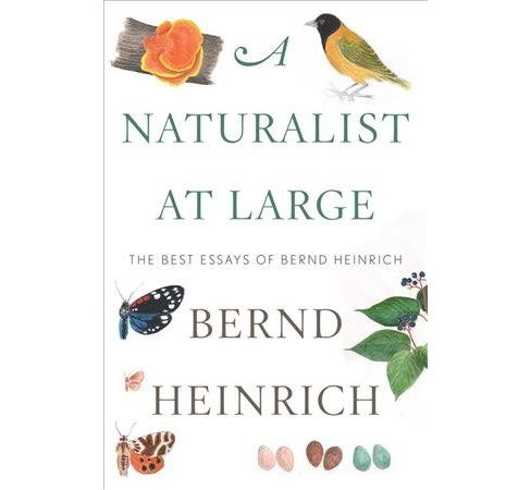 Naturalist at Large : The Best Essays of Bernd Heinrich -  (Hardcover) - image 1 of 1