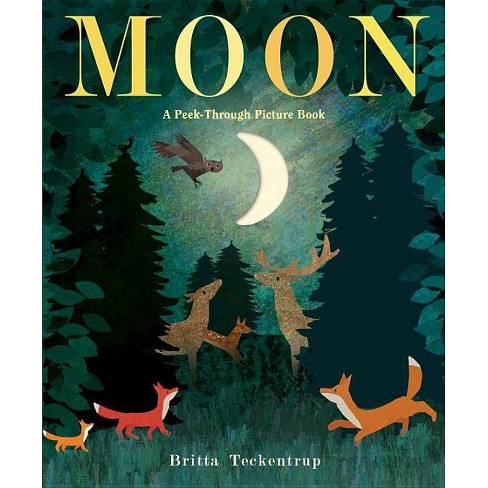 Moon by Brittany Techentrup (Hardcover) - image 1 of 1