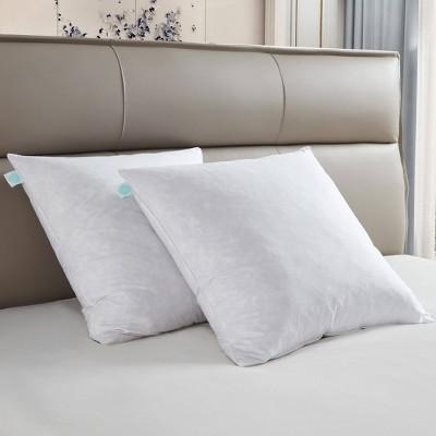 """20""""x20"""" Medium Firm 2pk Decorative Feather Pillow Insert - Martha Stewart"""