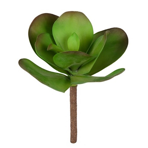 Vickerman 10 by 11 Inch Artificial Green Succulent Stem. - image 1 of 2