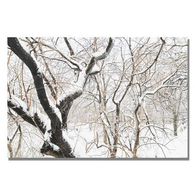 "22"" x 32"" Snowy Trees by Ariane Moshayedi - Trademark Fine Art"