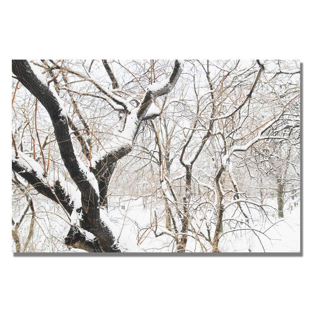 Image of 'Snowy Trees' by Ariane Moshayedi Ready to Hang Canvas Wall Art