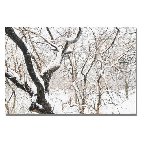 22 X 32 Snowy Trees By Ariane Moshayedi Trademark Fine Art Target