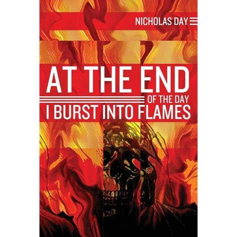 At the End of the Day I Burst Into Flames - by  Nicholas Day (Paperback) - image 1 of 1