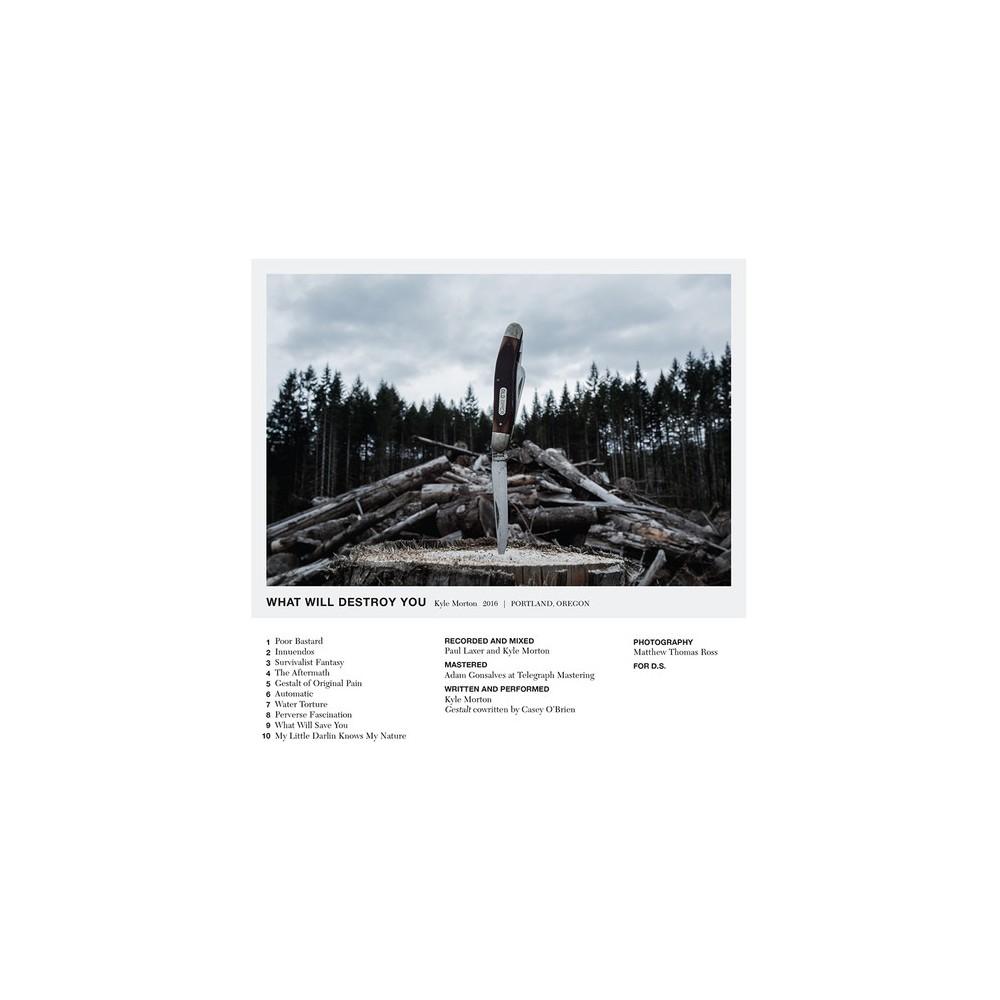 Kyle Morton - What Will Destroy You (Vinyl)