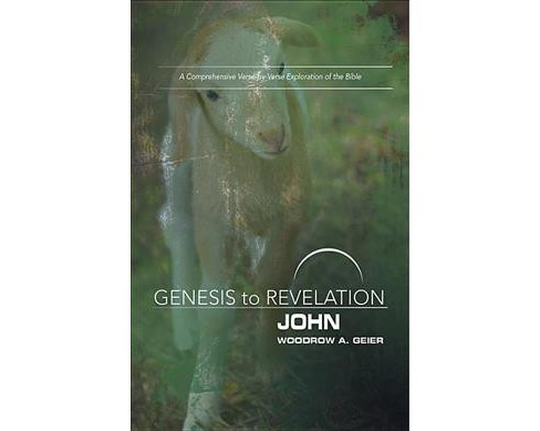 John : A Comprehensive Verse-by-Verse Exploration of the Bible, Participant Book (Paperback) (Woodrow A. - image 1 of 1