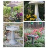 "17"" Bird Bath with Pedestal Charcoal - Bloem - image 3 of 4"