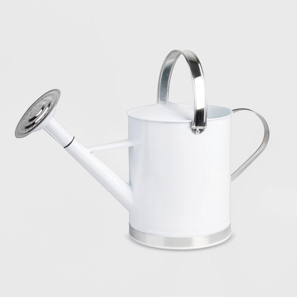 "Image of ""10"""" Zinc Metal Water Can Silver - Esschert Design, White Silver"""