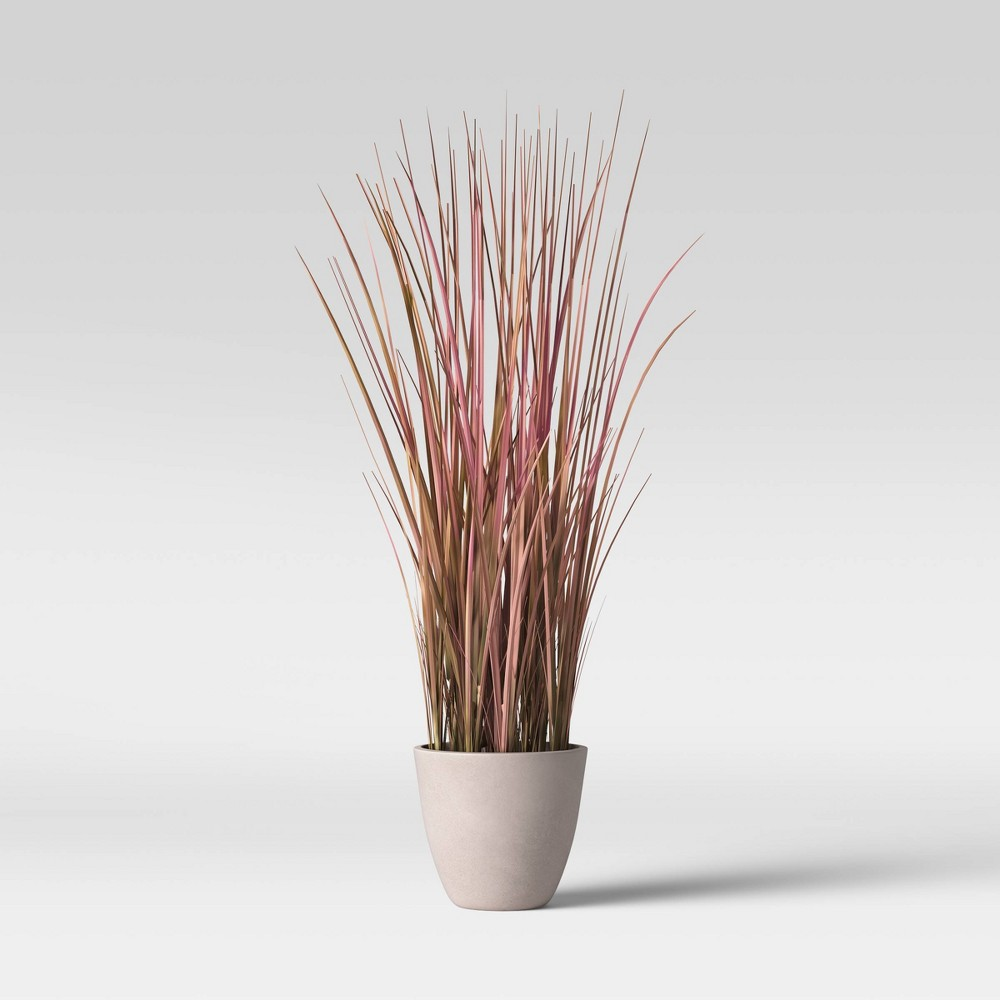 Image of 4' Potted Grass - Lloyd & Hannah