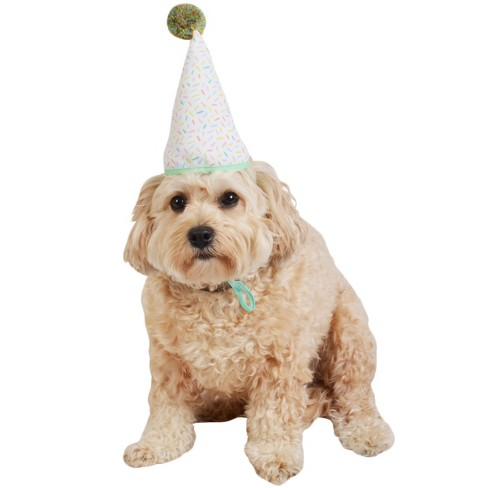 Pom Pom Birthday Hat for Dogs - Boots & Barkley™ - image 1 of 2