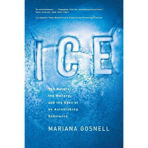 Ice - by  Mariana Gosnell (Paperback) - image 1 of 1
