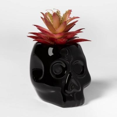Skull Halloween Succulent Black - Hyde & EEK! Boutique™