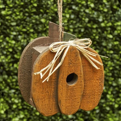 Lakeside Pumpkin Birdhouse - Rustic Farmhouse Harvest Decor for Outdoors