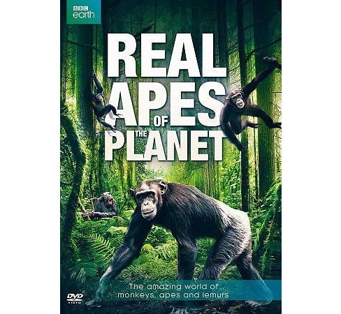 Real Apes Of The Planet (DVD) - image 1 of 1
