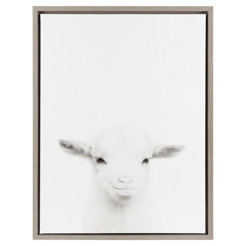 baby goat framed canvas art uniek target