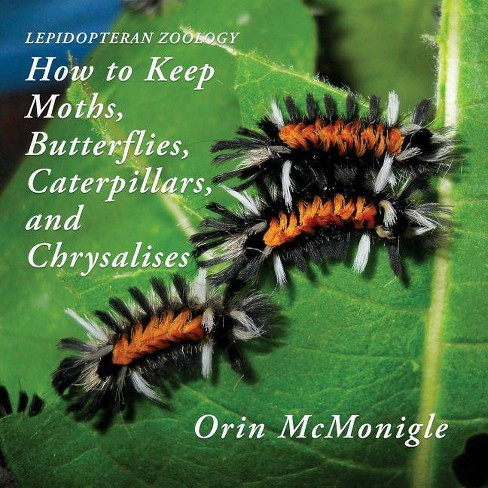 Lepidopteran Zoology - by  Orin McMonigle (Paperback) - image 1 of 1