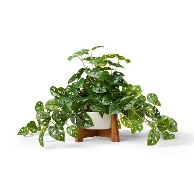 """23"""" x 24"""" Faux Monstera Adansonii Plant in Pot with Wood Stand White - Hilton Carter for Target"""