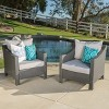 Antibes Set of 2 Wicker Club Chair with Cushions - Christopher Knight Home - image 2 of 4