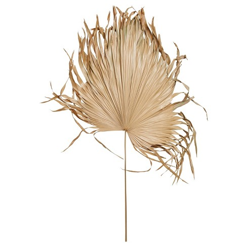 68 X 18 Dried Palm Fan Leaf Stem 3r Studios Target