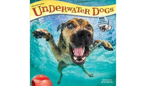 Underwater Dogs 2019 Calendar -  (Paperback) - image 1 of 1