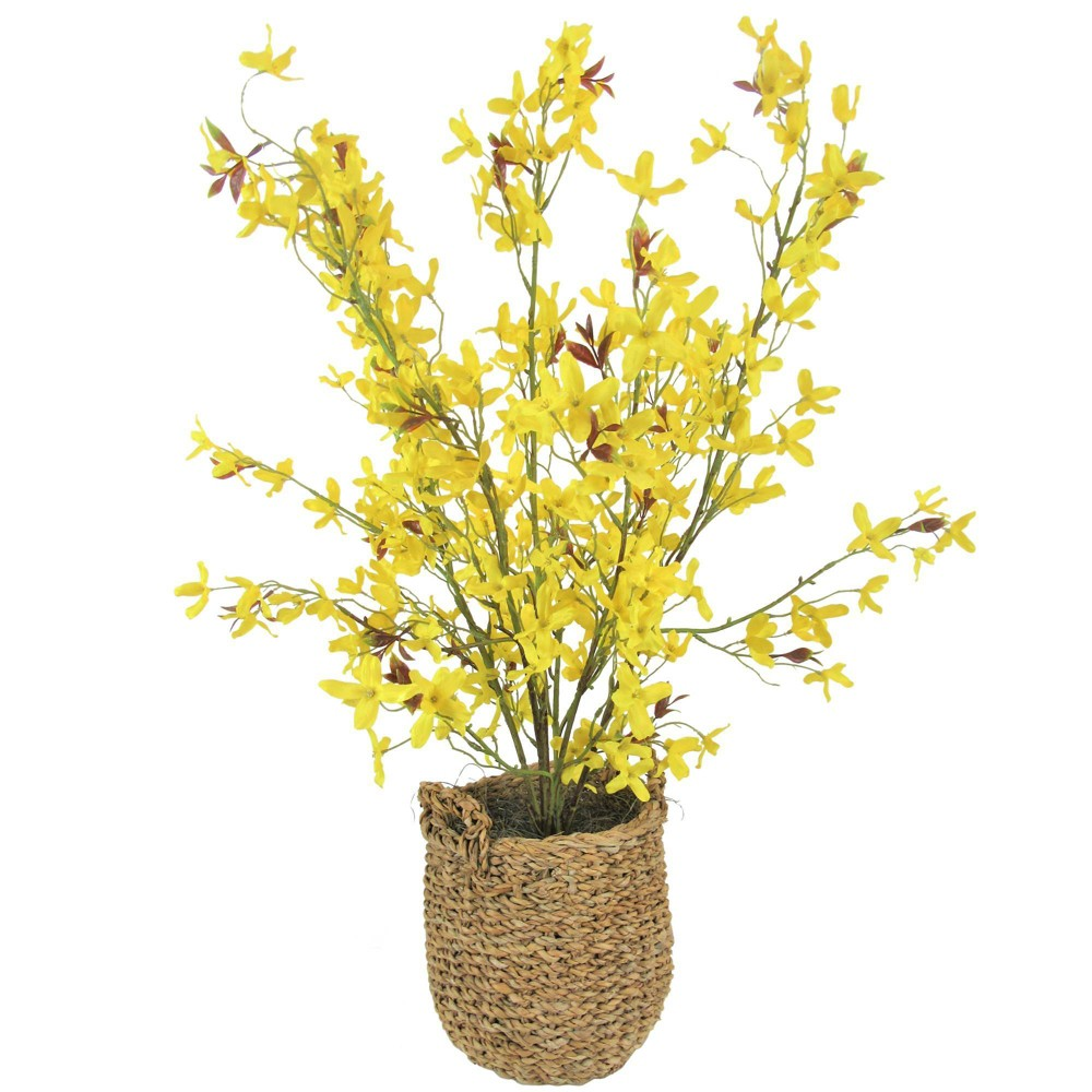 """Image of """"28"""""""" x 16"""""""" Artificial Forsythia in Basket with Handles Yellow - LCG Florals"""""""