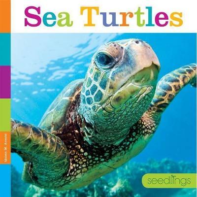 Sea Turtles - (Seedlings)by Quinn M Arnold (Paperback)