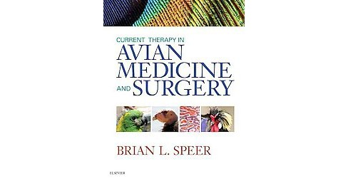 Current Therapy in Avian Medicine and Surgery (Hardcover) - image 1 of 1